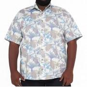 Camisa Colarinho XPlusSize Estampada