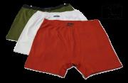 Kit 10 Cuecas Boxer Algodão Plus Size