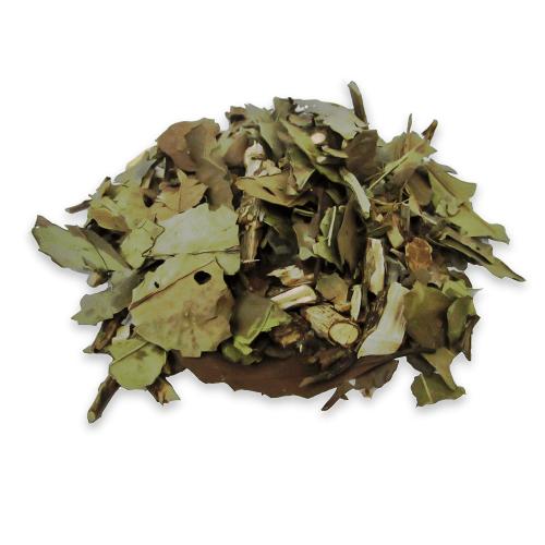 Chá de Ban-Chá - Camellia sinensis (Banchá) - 100g