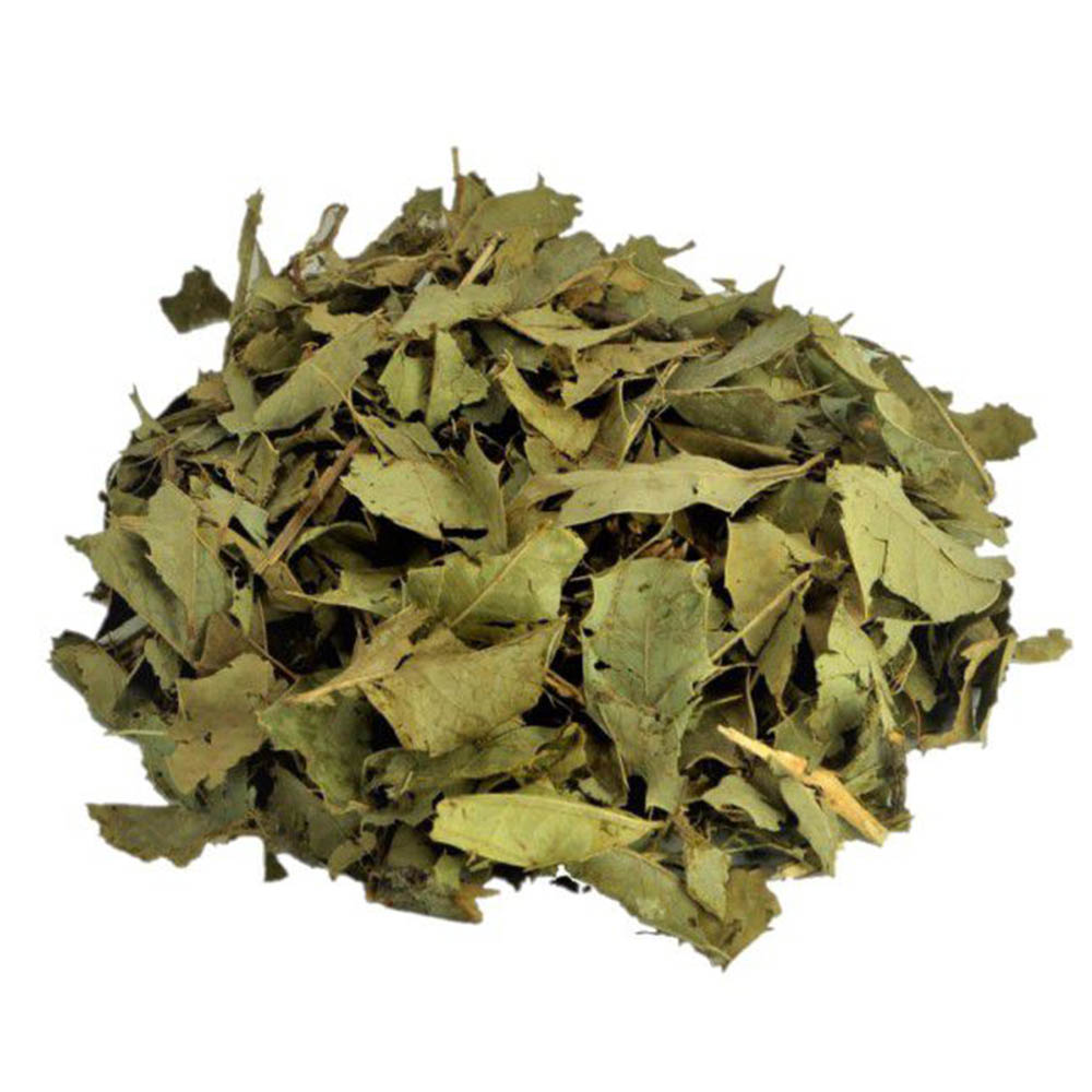 Chá de Espinheira Santa - Maytenus spp - 100g