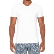 Camiseta Masculina Hering Gola V Branca
