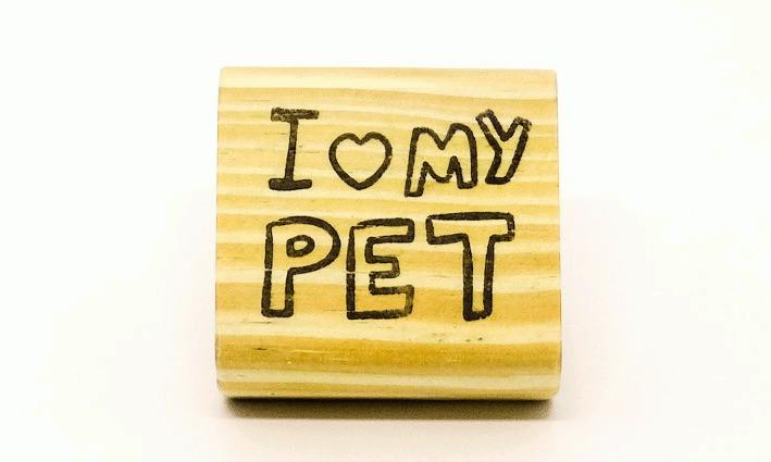 Carimbo I love my pet