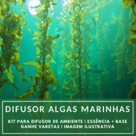 Essência Algas Marinhas + Base Perfume - Ganhe Varetas