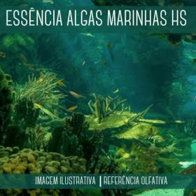 Essência Algas Marinhas HS