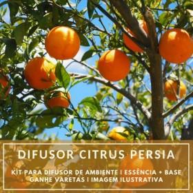 Essência Citrus Persia + Base Perfume - Ganhe Varetas