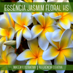 Essência Jasmim Floral HS 100ml