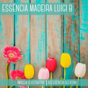 Essência Madeira Luigi Bertolli Contratipo