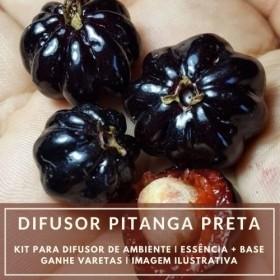 Essência Pitanga Preta + Base Perfume - Ganhe Varetas