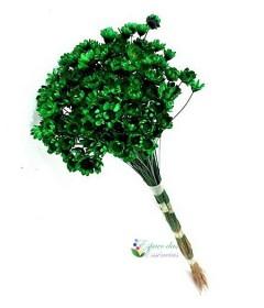 Sempre Viva Verde Escuro