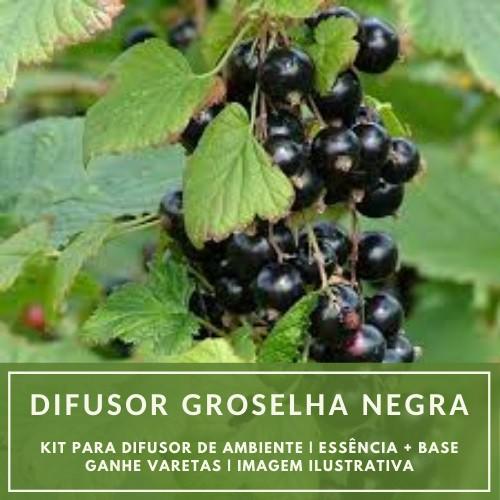 Essência Groselha Negra + Base Perfume - Ganhe Varetas