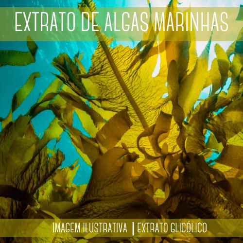 Extrato de Algas Marinhas 100ml