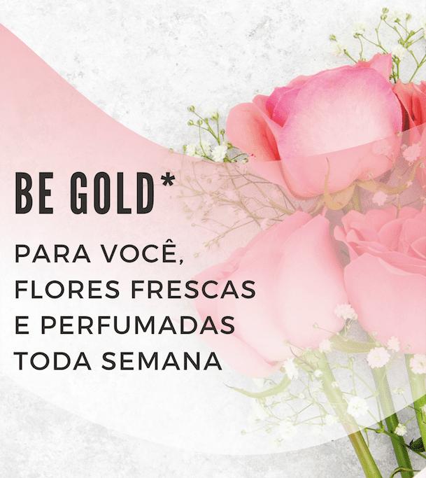 Be Gold - PLANO SEMESTRAL