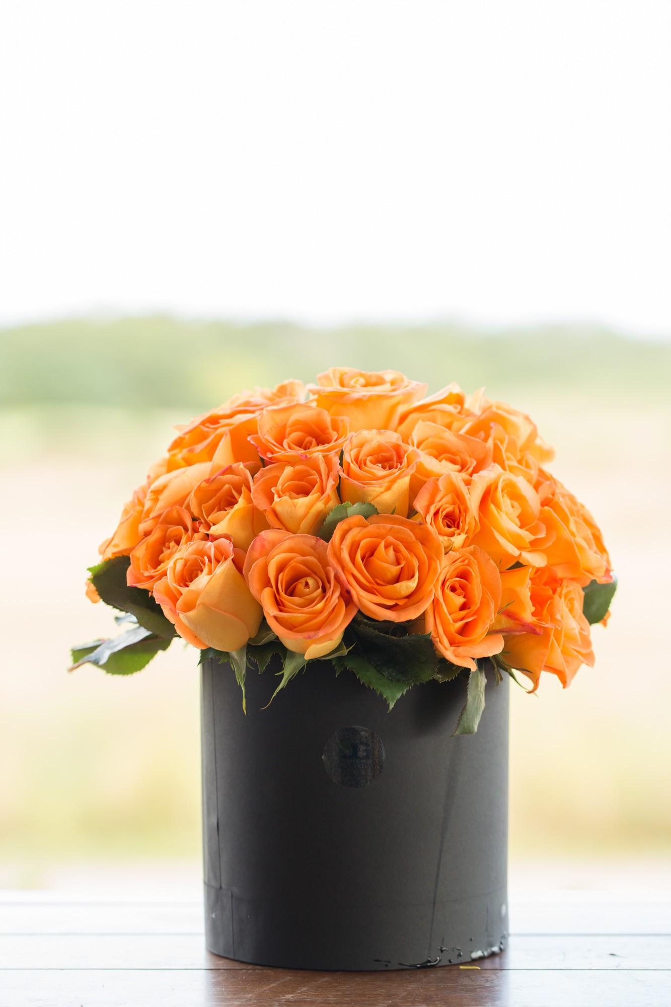 Rosas Orange Premium