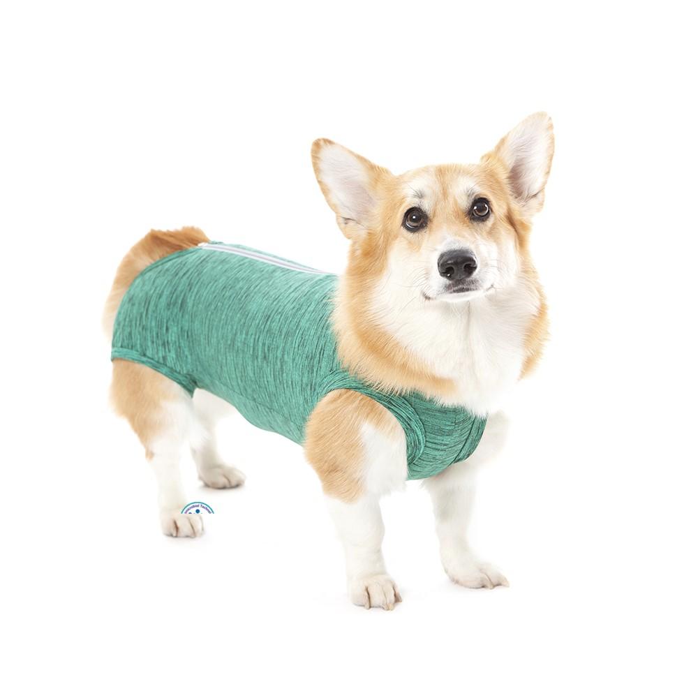 Roupa Cirúrgica Regular Duo Dry Verde para Cães Pet Med