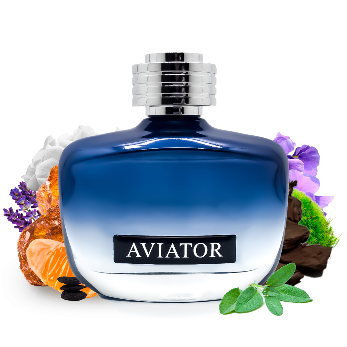 Perfume Aviator Code Masculino Edt 100ml Paris Bleu