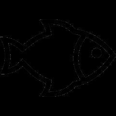 Expedição Submarina