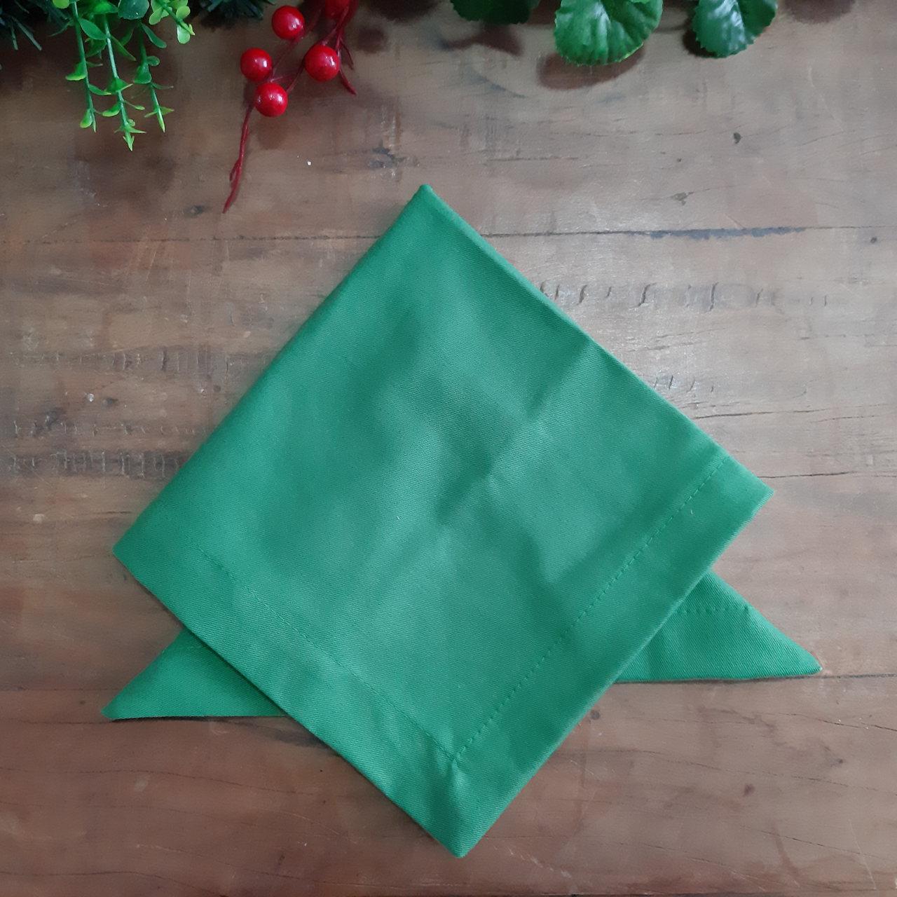 2 Guardanapos Canto Mitrado Lisos Verde Claro