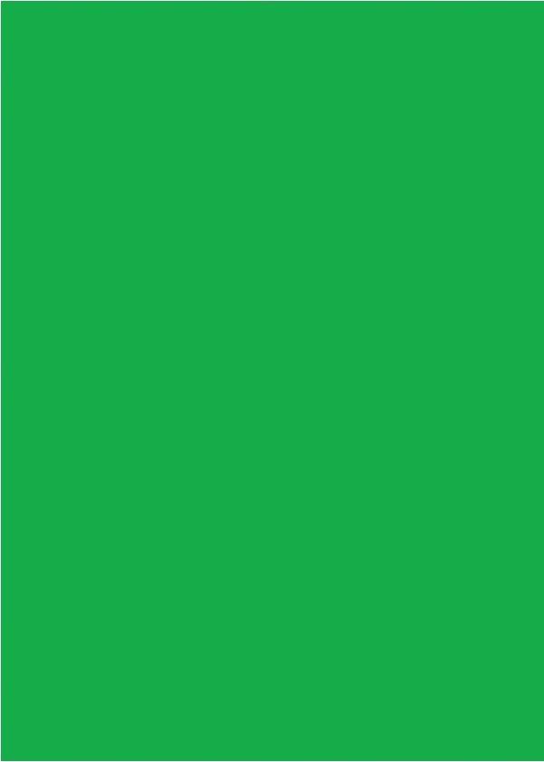 Papel Color Set Verde Escuro Kaz