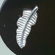 Piercing Tragus Prata 925 Pena