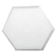 Forma De Gesso 3D em ABS - ABS0162-2MM 24x21cm