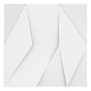 Forma De Gesso 3D em PET - PET0015 -1.8MM 29x29cm