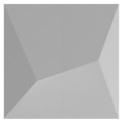 Forma De Gesso 3D em PET - PET0024-1.8MM 29x29cm