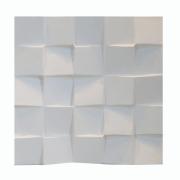 Forma De Gesso 3D em PET- PET0105- 1.8MM 40,5x40,5cm