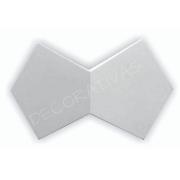 Forma De Gesso 3D em PET - PET0115-1.8MM 38x24cm
