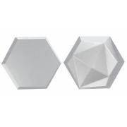 Forma De Gesso 3D em PET - PET0143-1.8MM 25x21cm