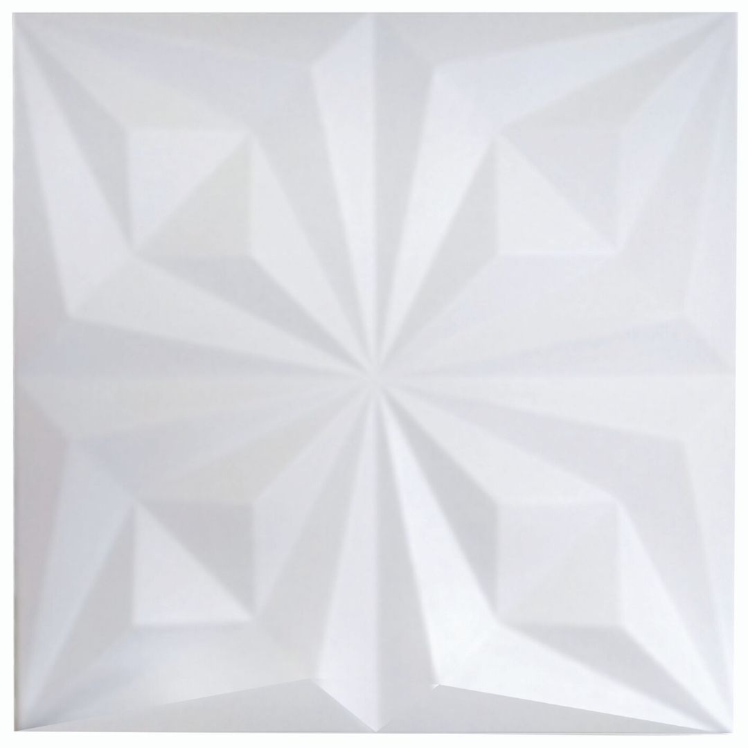 Forma De Gesso 3D em ABS - ABS0193-2MM 48x48cm