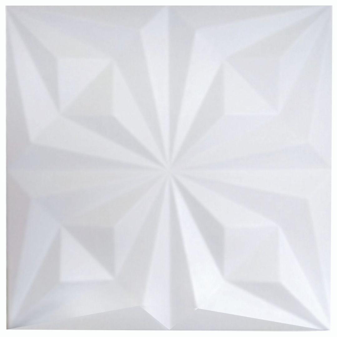 Forma De Gesso 3D em PET - PET0193-1.8MM 48x48cm