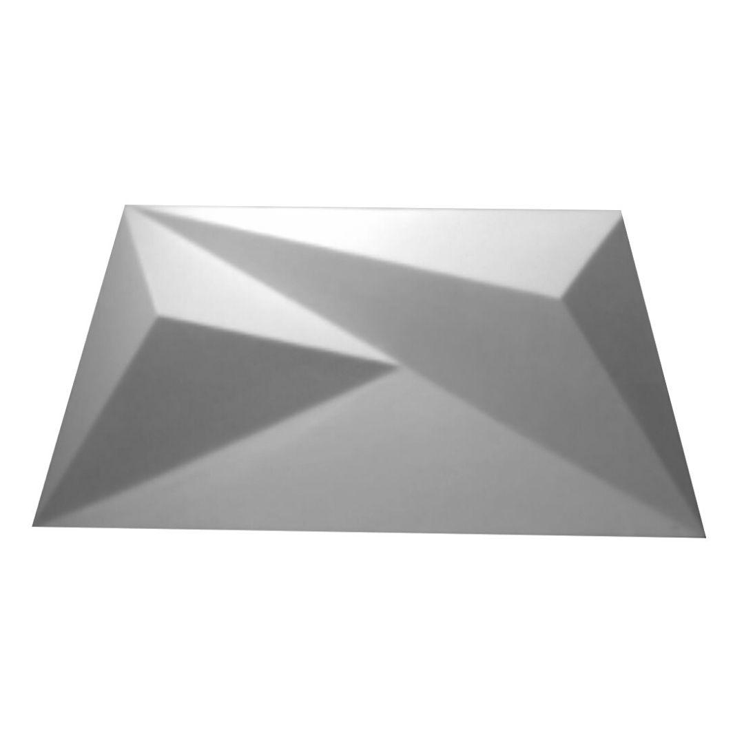 Forma De Gesso 3D em PET - PET0196-1.8MM 48x24cm