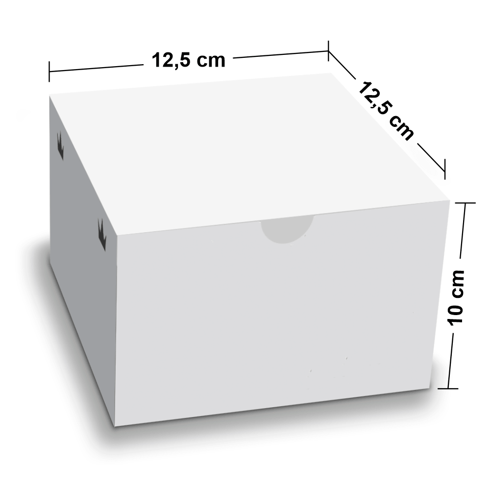 Embalagem para Lanches ou Hambúrguer - WHITE - 100 unidades - GG  - 24 PRINT EMBALAGENS