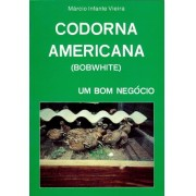 Codorna Americana - Bobwhite