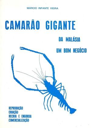 Camarão Gigante da Malásia - Um Bom Negócio