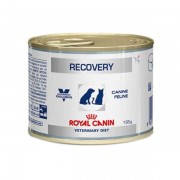 ALIMENTO ÚMIDO ROYAL CANIN RECOVERY WET DOG/CAT 195g