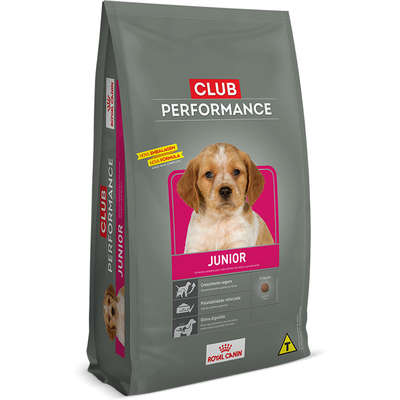 RAÇÃO ROYAL CANIN CÃES JUNIOR CLUB PERFORMANCE