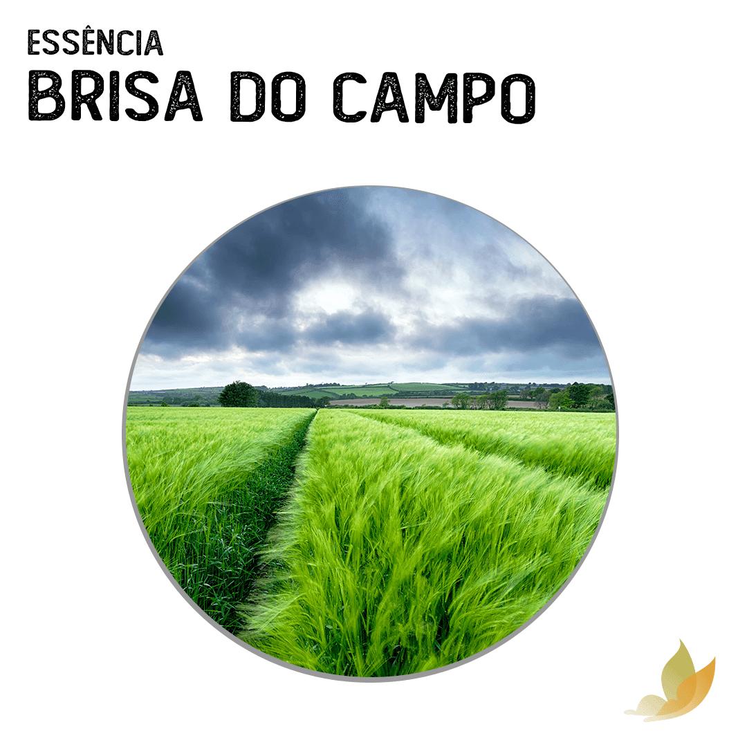 ESSENCIA BRISA DO CAMPO