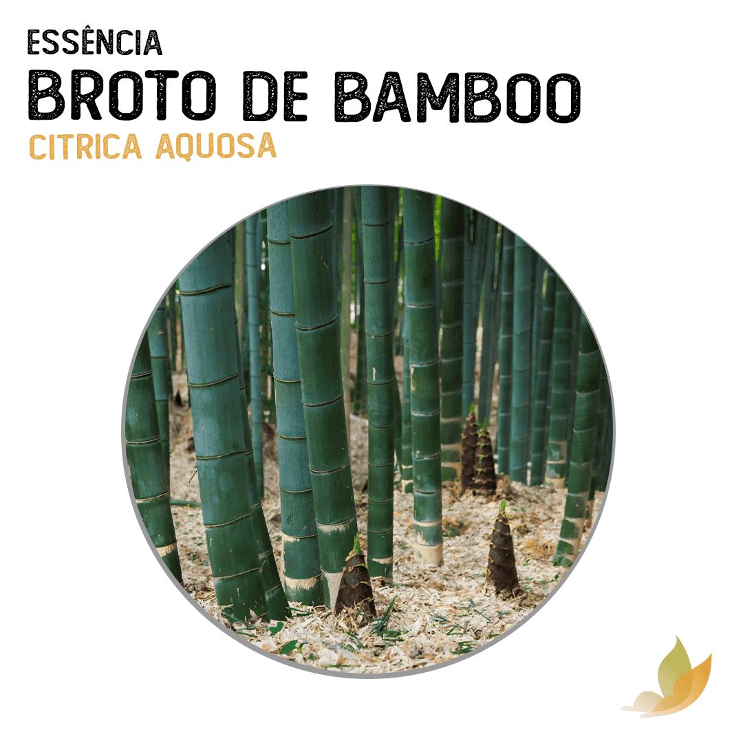ESSENCIA BROTO DE BAMBOO