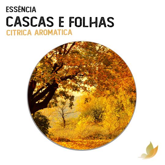 ESSENCIA CASCAS E FOLHAS
