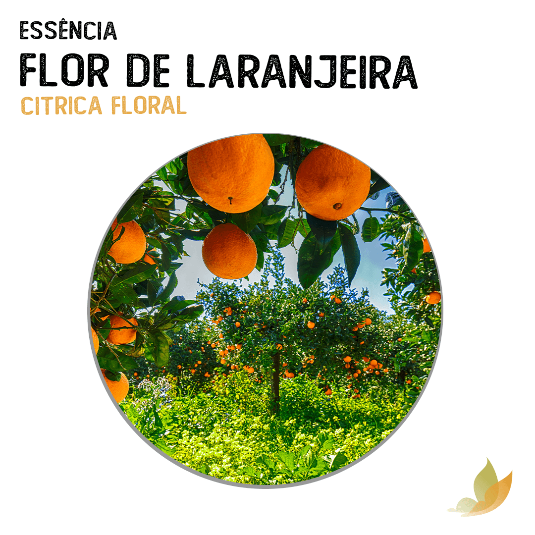 ESSENCIA FLOR DE LARANJEIRA