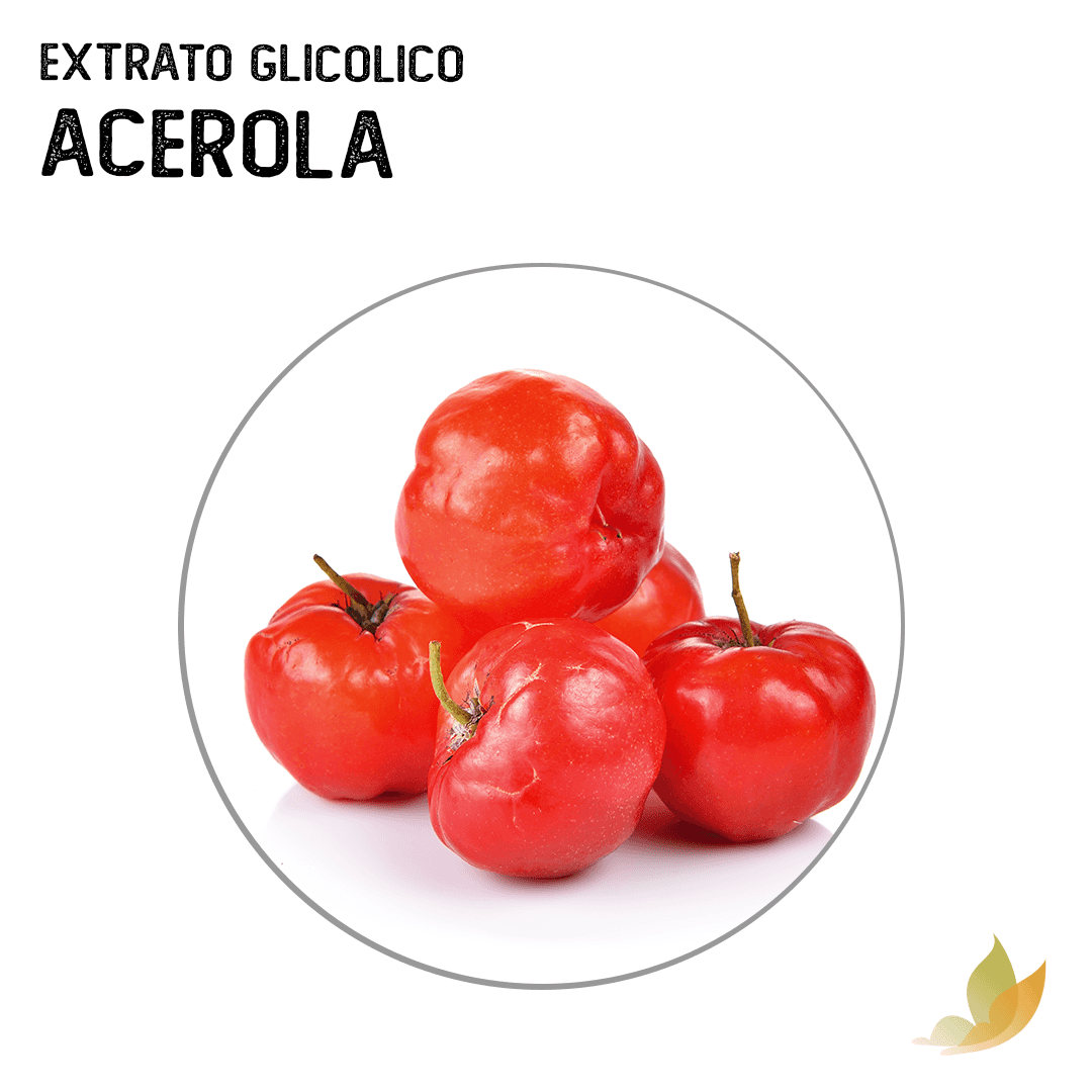 EXTRATO GLICOLICO DE ACEROLA