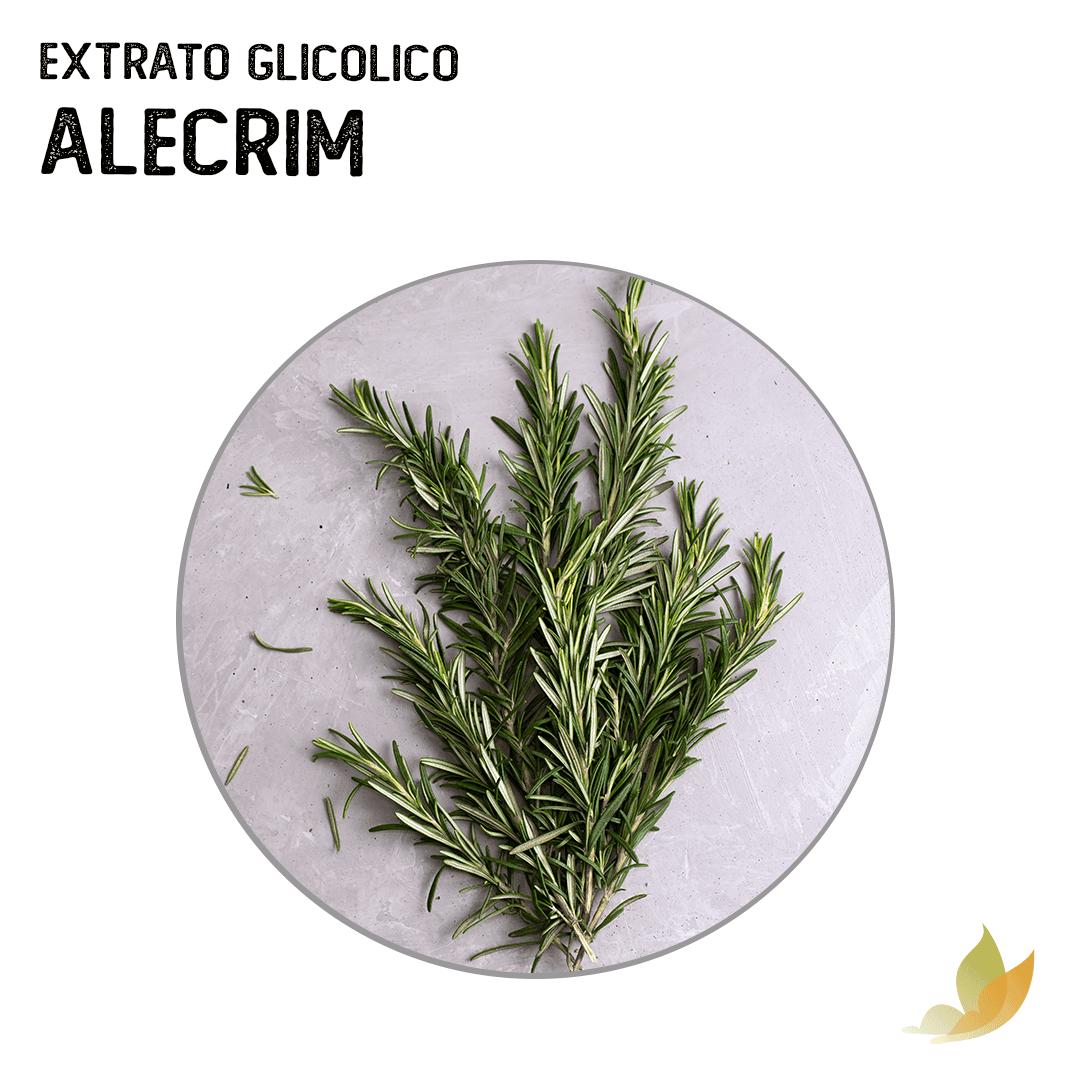EXTRATO GLICOLICO DE ALECRIM
