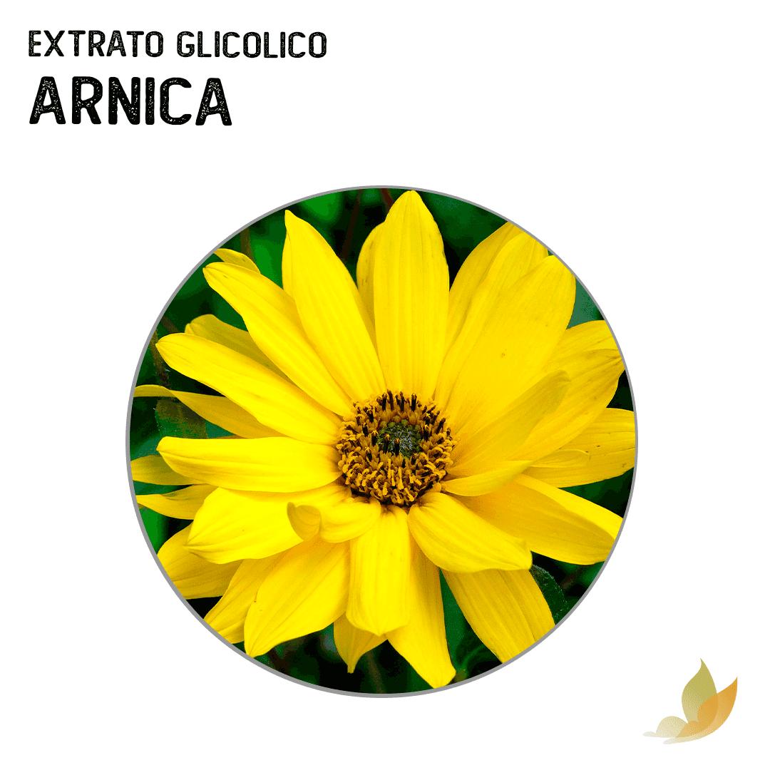 EXTRATO GLICOLICO DE ARNICA