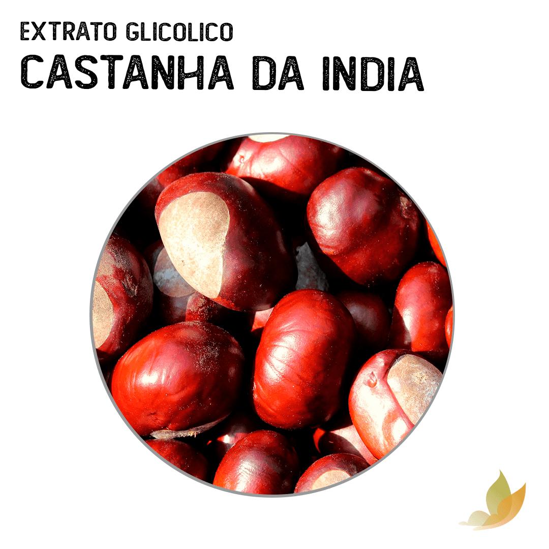 EXTRATO GLICOLICO DE CASTANHA DA INDIA