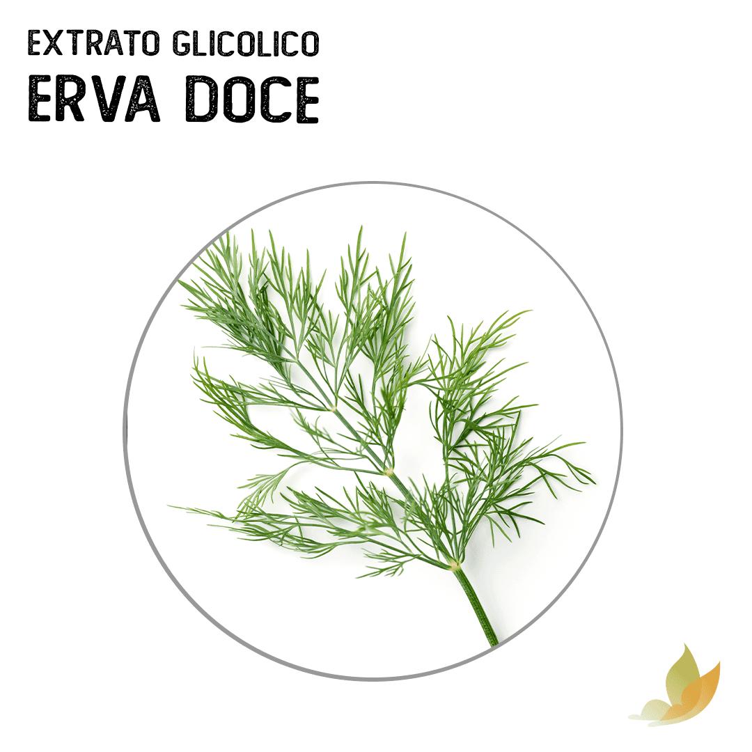 EXTRATO GLICOLICO DE ERVA DOCE