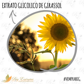 EXTRATO GLICOLICO DE GIRASSOL