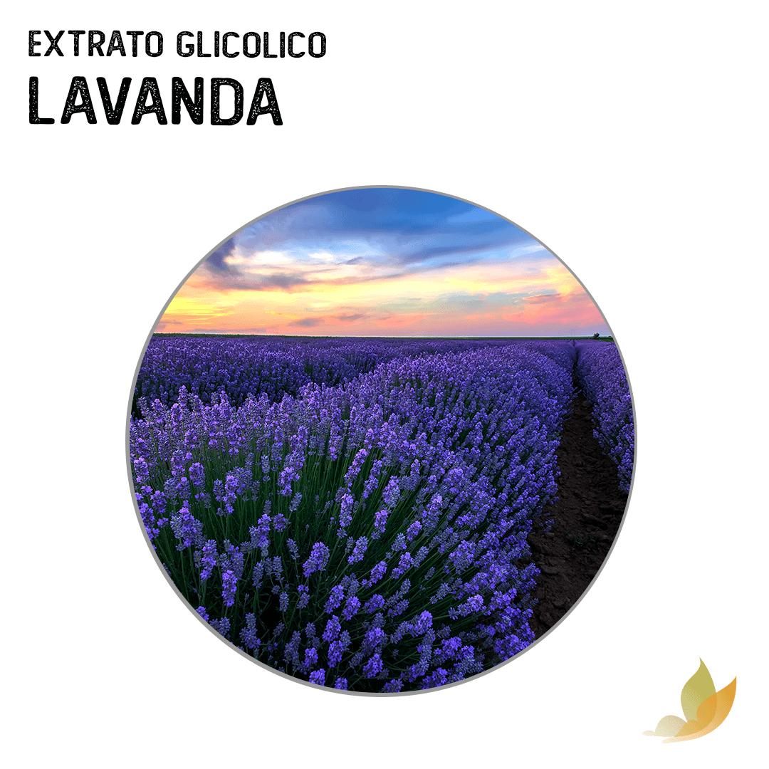 EXTRATO GLICOLICO DE LAVANDA