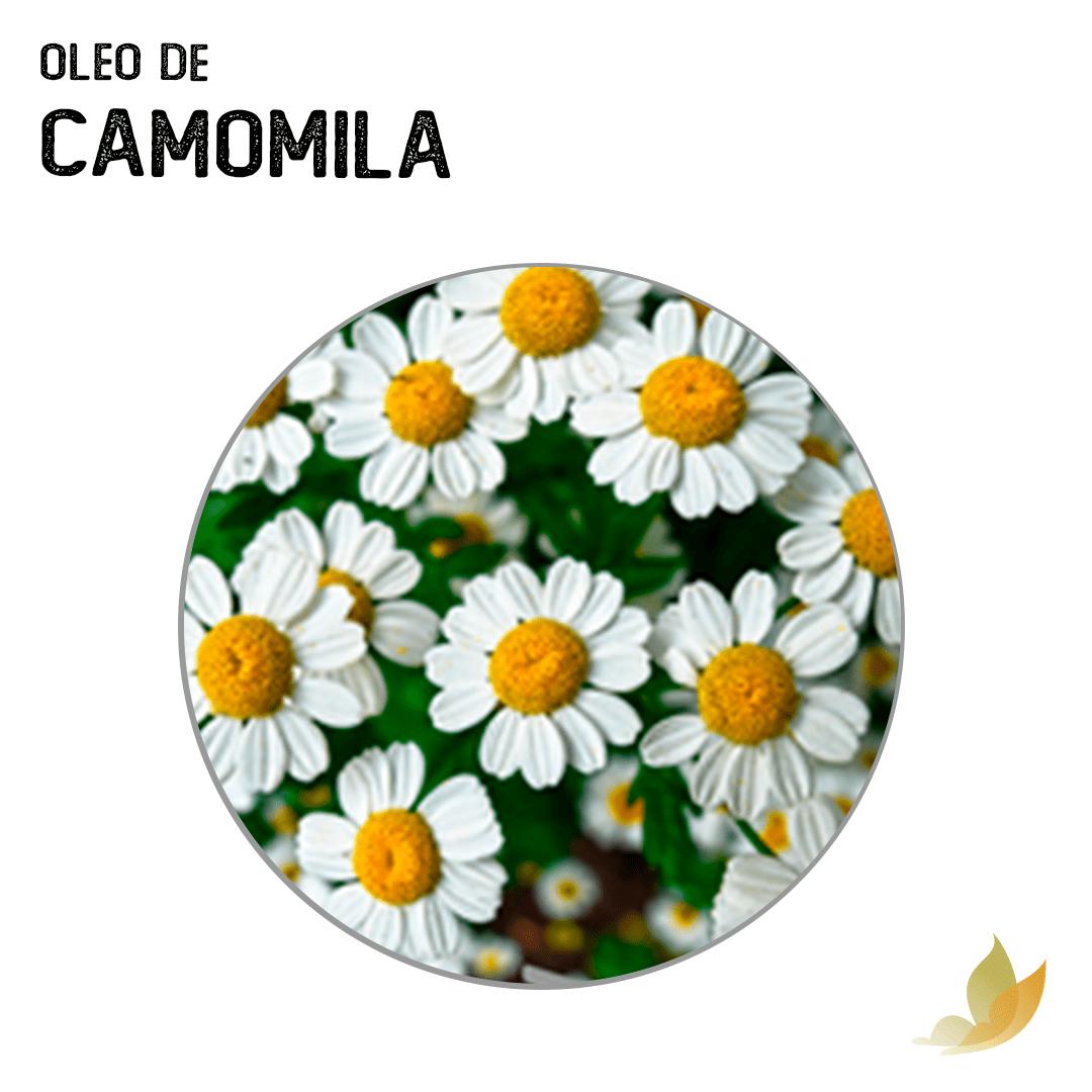 OLEO VEGETAL DE CAMOMILA