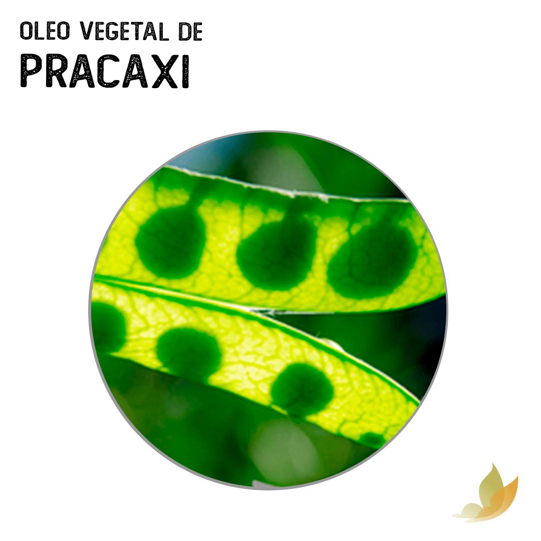 OLEO VEGETAL DE PRACAXI